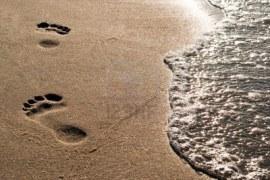9979448-piede-pure-in-testa-sabbia-lungo-l-39-acqua