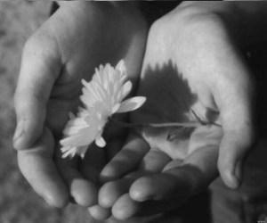 fiore-in-mano